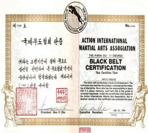Martin Paradine Black Belt Certificate